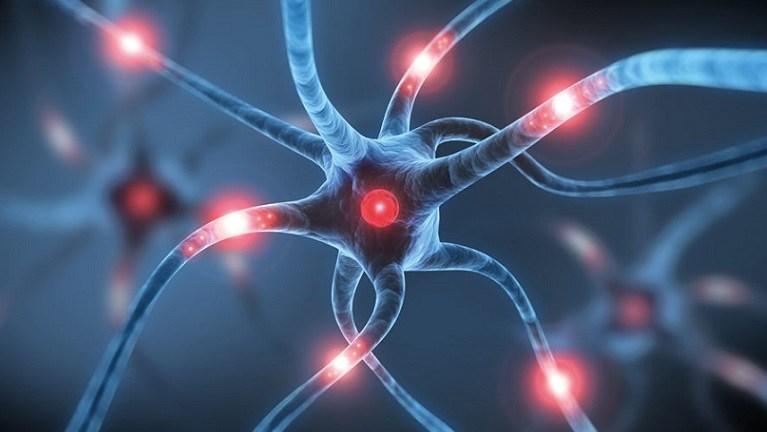 Covid19: i soggetti con la sclerosi multipla rischiano un aumento della malattia?