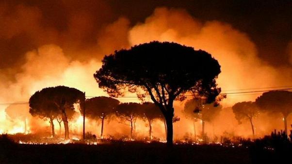 Spagna: incendio nella parte sud-ovest del Paese.
