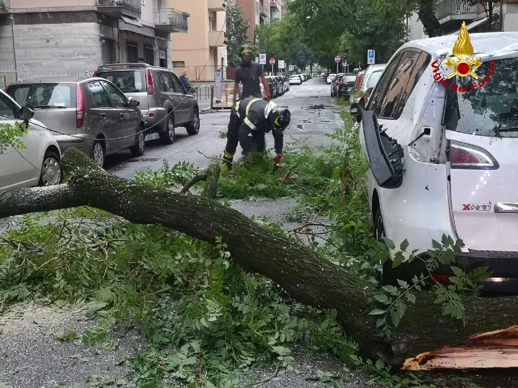 Maltempo: Verona la città più colpita, chiesto lo 'Stato di Crisi'